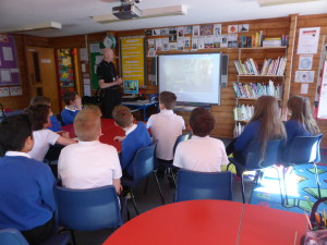 P6/7 Drugs Awareness
